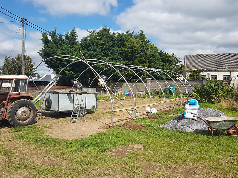 Newcastle Community Composting Polytunnel 3