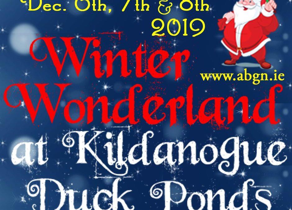 Winter Wonderland at Kildanogue Duck Ponds 2019