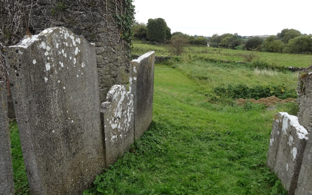 The Historic Graves project in Newcastle, Tipperary.